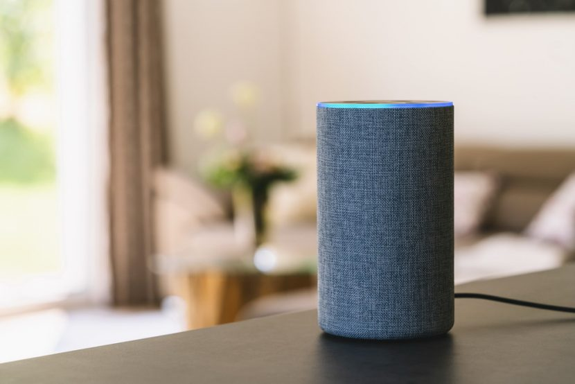 Why Privacy is the Smart Speaker Trade-Off