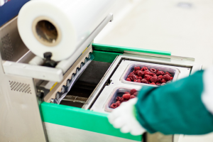 Improved products Viability with Innovative packaging system