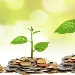 Wise Money-Making Investment for Future Growth