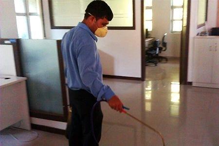 Essentials for a Pesticide-Free Office