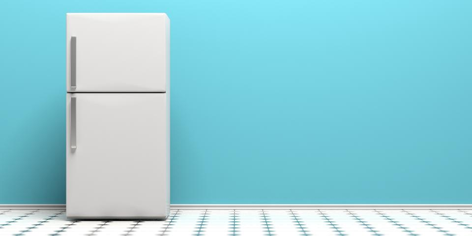Top Refrigerator Brands and Types Every Homemaker Can Trust