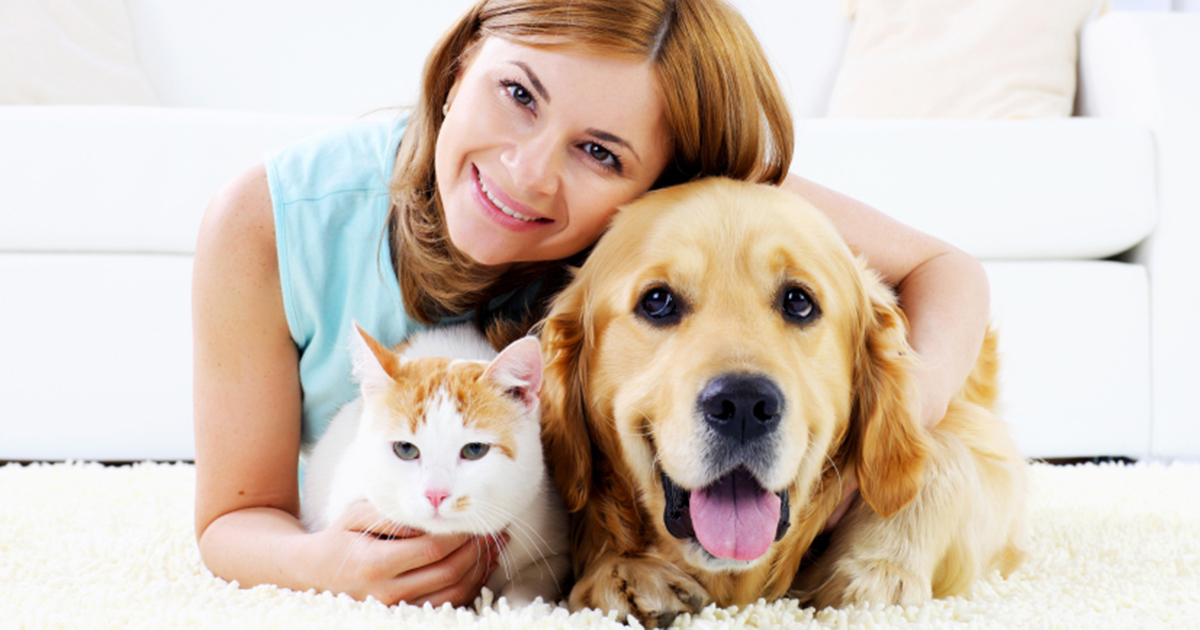 Five tips for selecting the best Petsitter