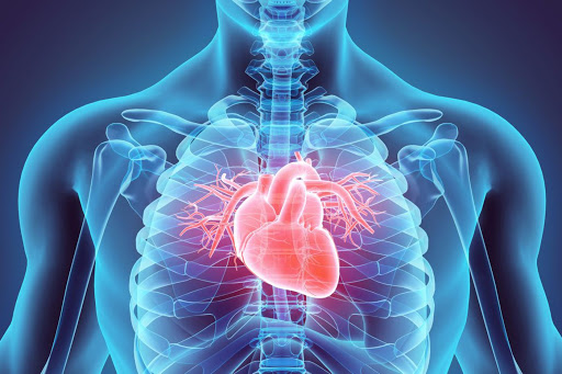 Five Questions to Ask Your Cardiologist During Your Next Appointment
