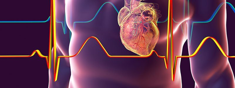 The Most Common Vascular Health Problems